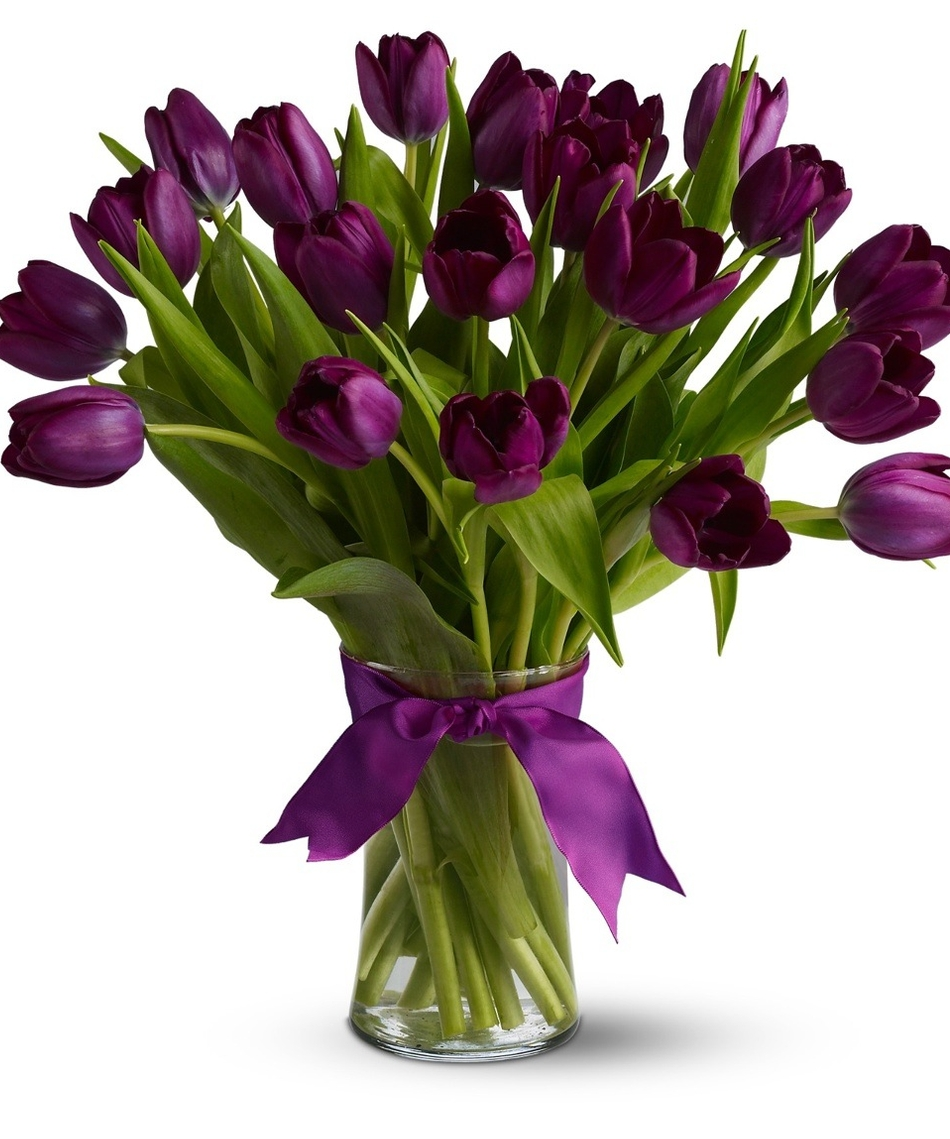 Tulips for Bouquet de tulipes