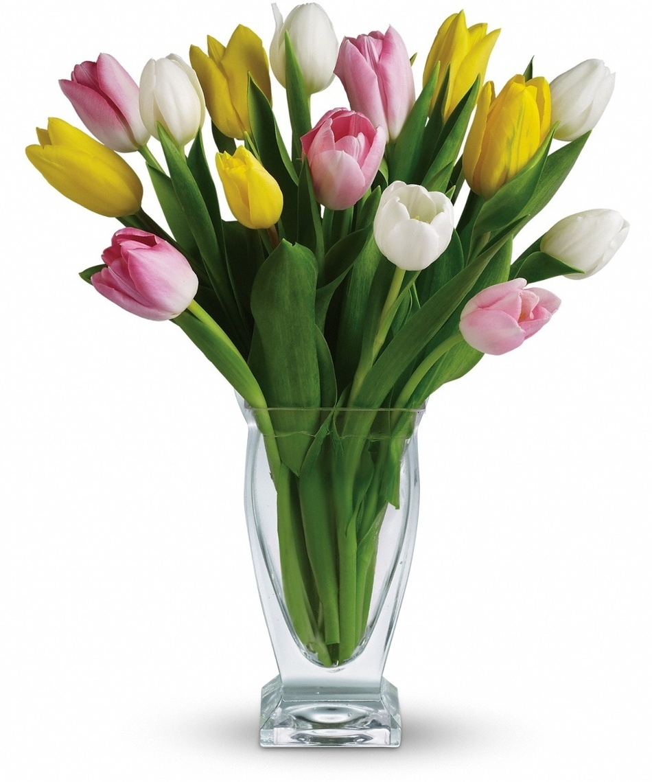 Spring Flowers at Allen's Flowers: Time for Tulips!