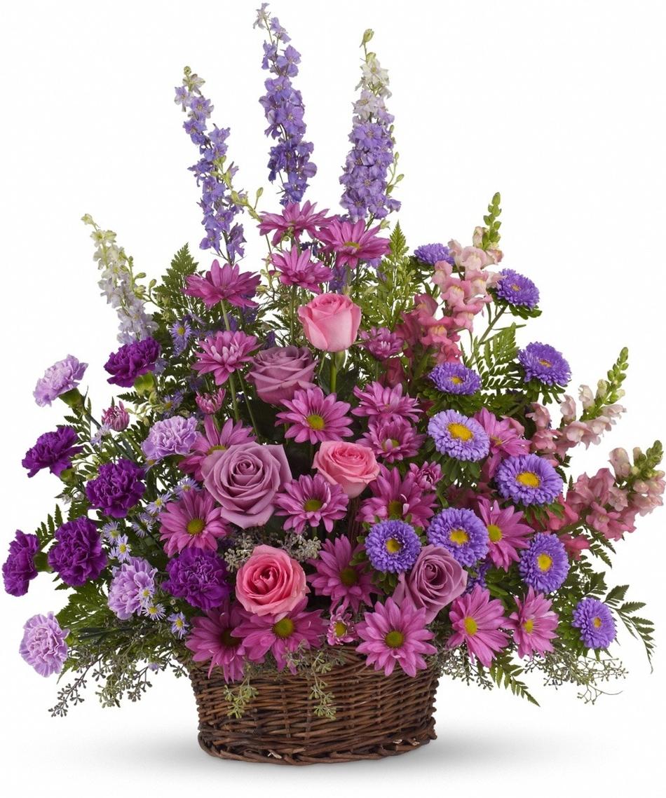 The Larkspur Julys Flower Allens Flowers Blog
