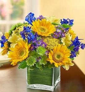 sunflowersa4