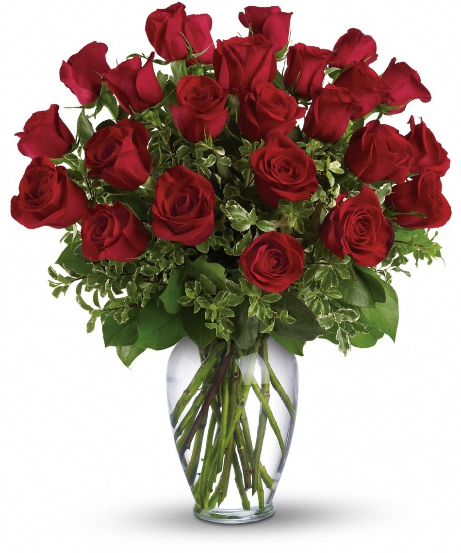 Send the best roses available for valentines day allens flowers blog roses are already a beautiful flower no matter what the variety but there are some roses that stand out for their size color and petal quantities izmirmasajfo