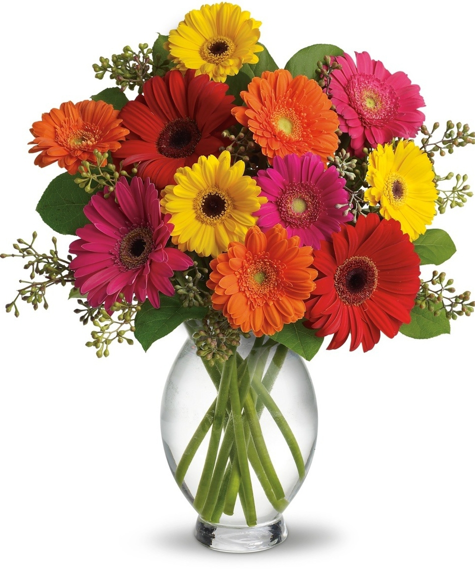 Say Thank You With Flowers Plants Or Special Expressions Of